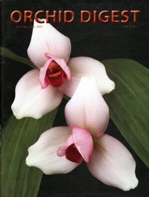The Lycaste and Brassavola Issue 71-4