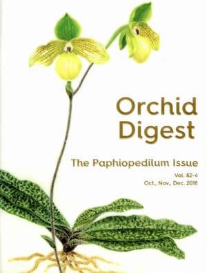 The Paphiopedilum Issue 82-4
