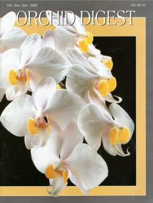 The Phalaenopsis Issue 66-4