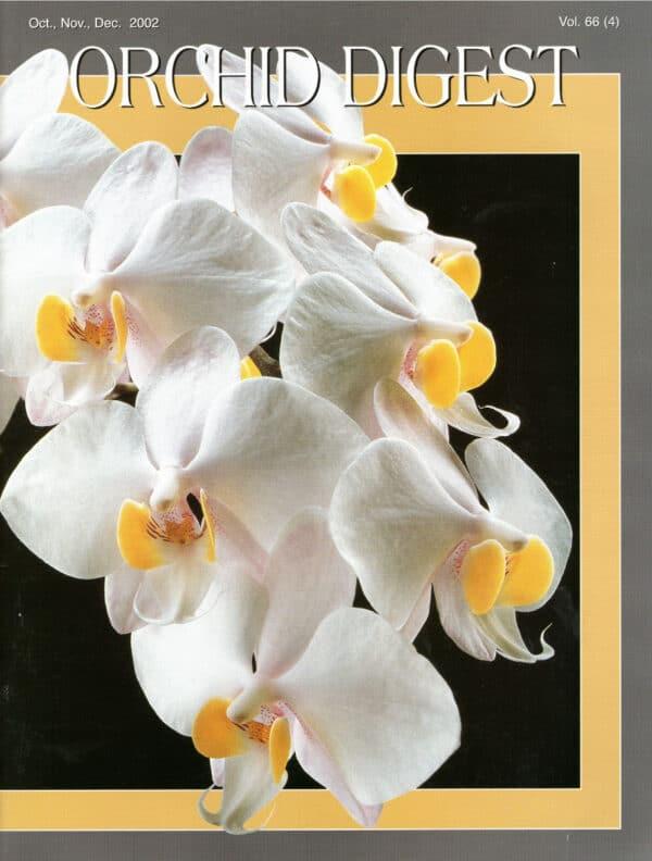 The Phalaenopsis Issue 66-4